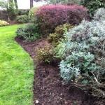 Garden Maintenance Waterford & Tramore