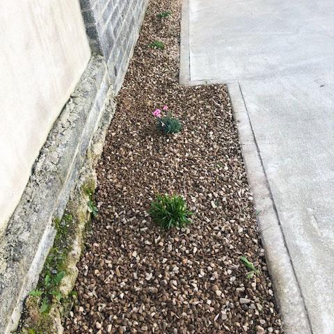 garden-maintenance-after