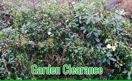 gardenmaintenancetramore_GardenMaintenance_3