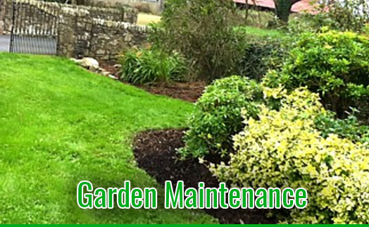 gardenmaintenancetramore_GardenMaintenance