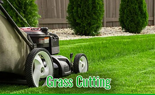 gardenmaintenancetramore_GrassCutting