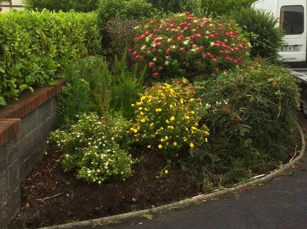 home-garden-services-tramore